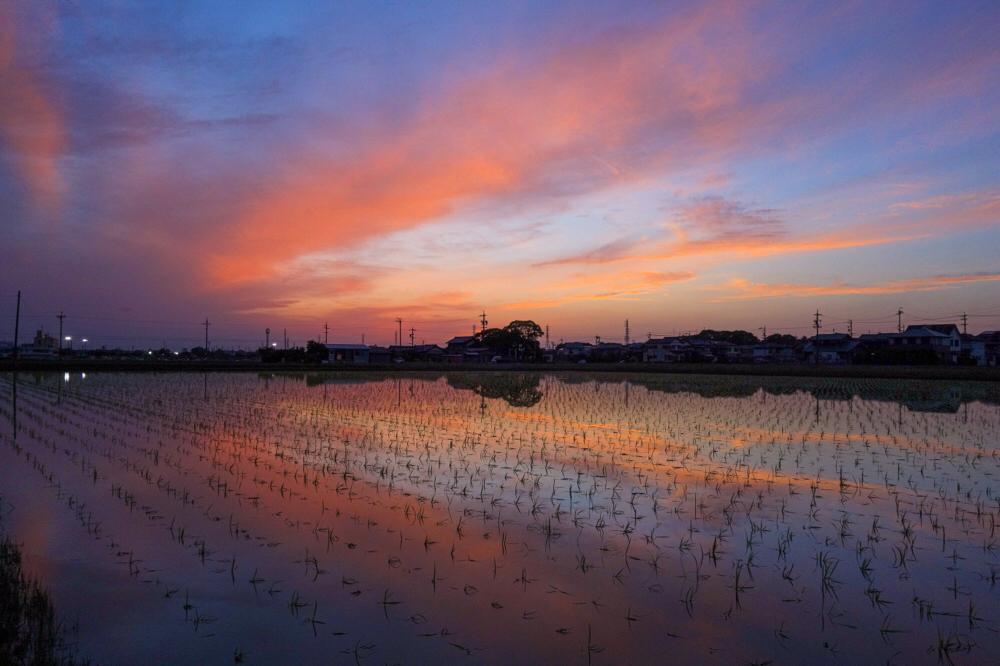 SONY DSC-RX100  iso100 10mm f8 1/60 M  photo : toshimasa