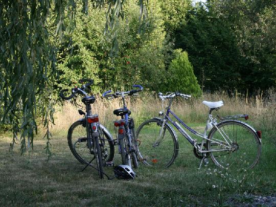 Fahrräder können innerhalb des Gartenbereichs abgestellt werden.