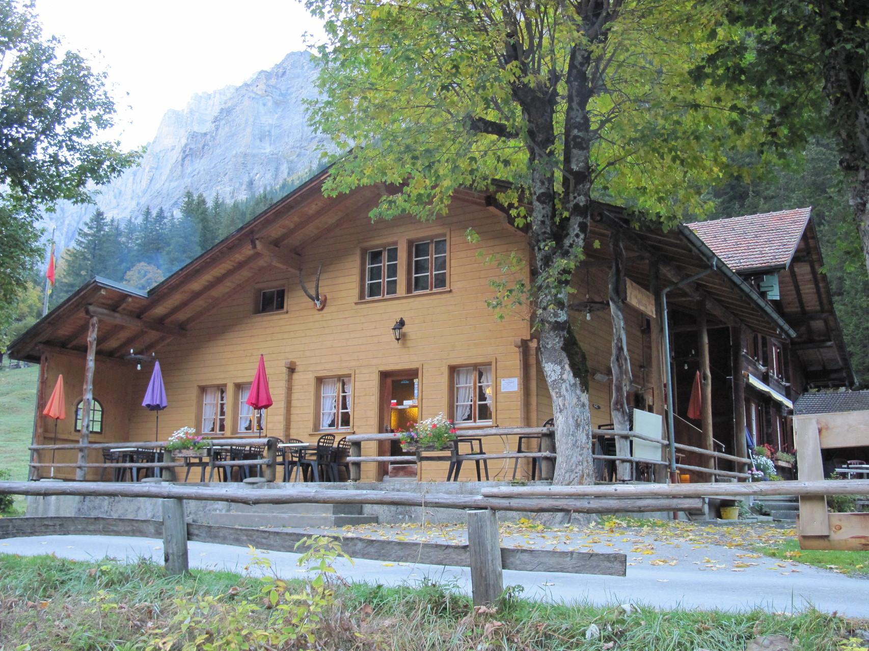 Restaurant Steinbock Selden