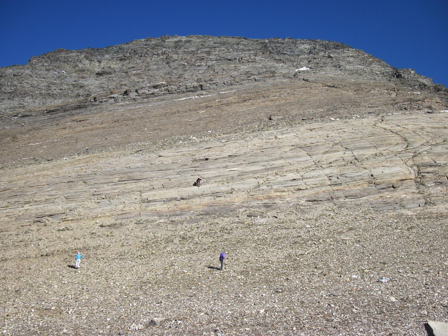 Suchen nach Rutil in der unendlichen Gesteinswüste