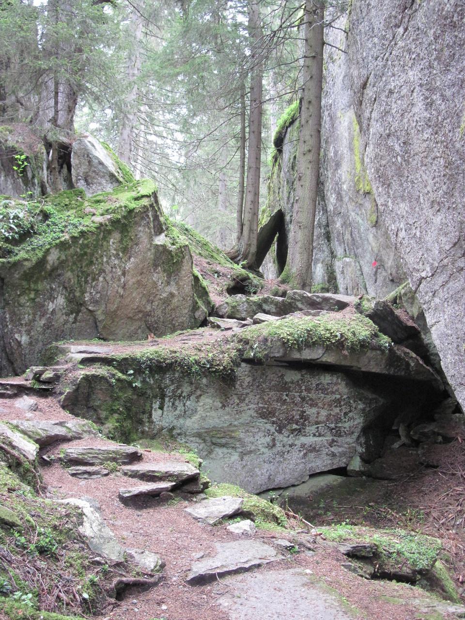 Im Wald Richtung Massaweg