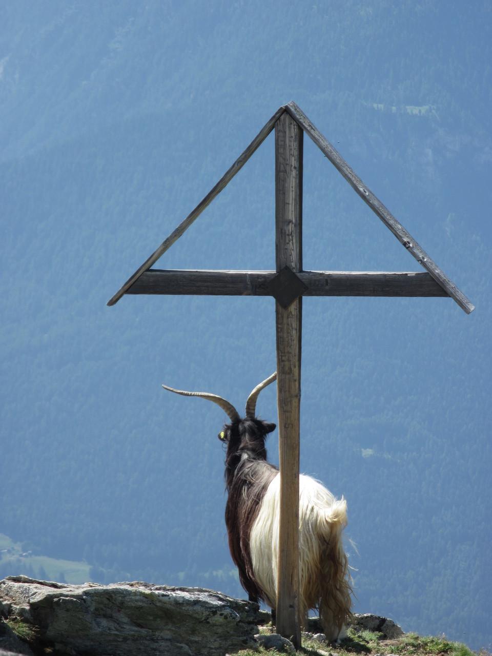 Gipfelkreuz Gärsthorn