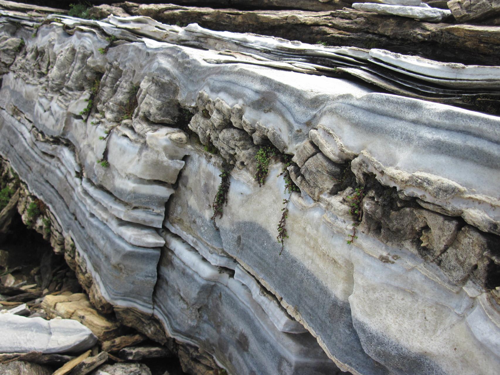Wunderbare Geologie in der Region Chalte Wasser