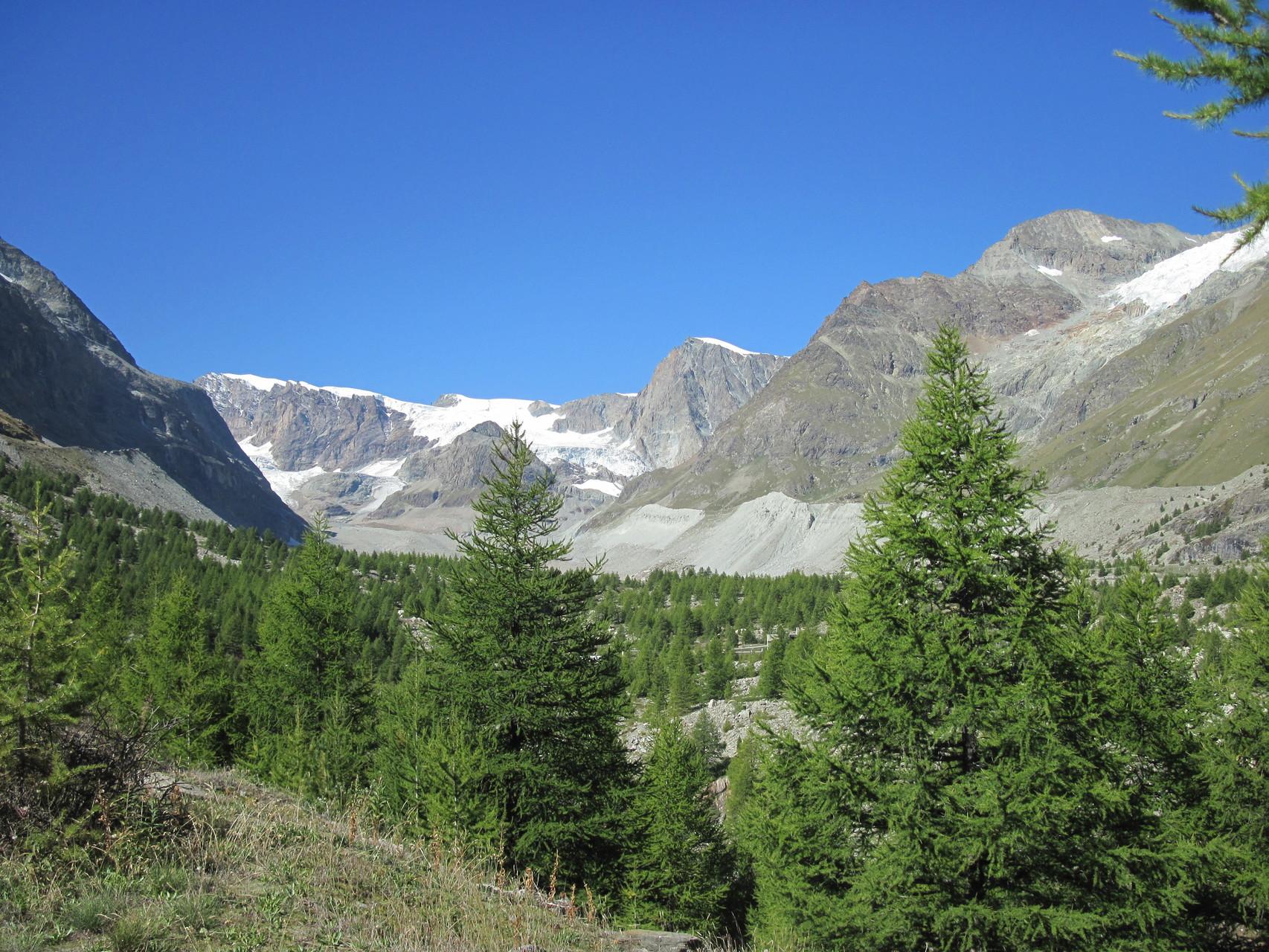 Blick Richtung Ziel: Schönbielhütte
