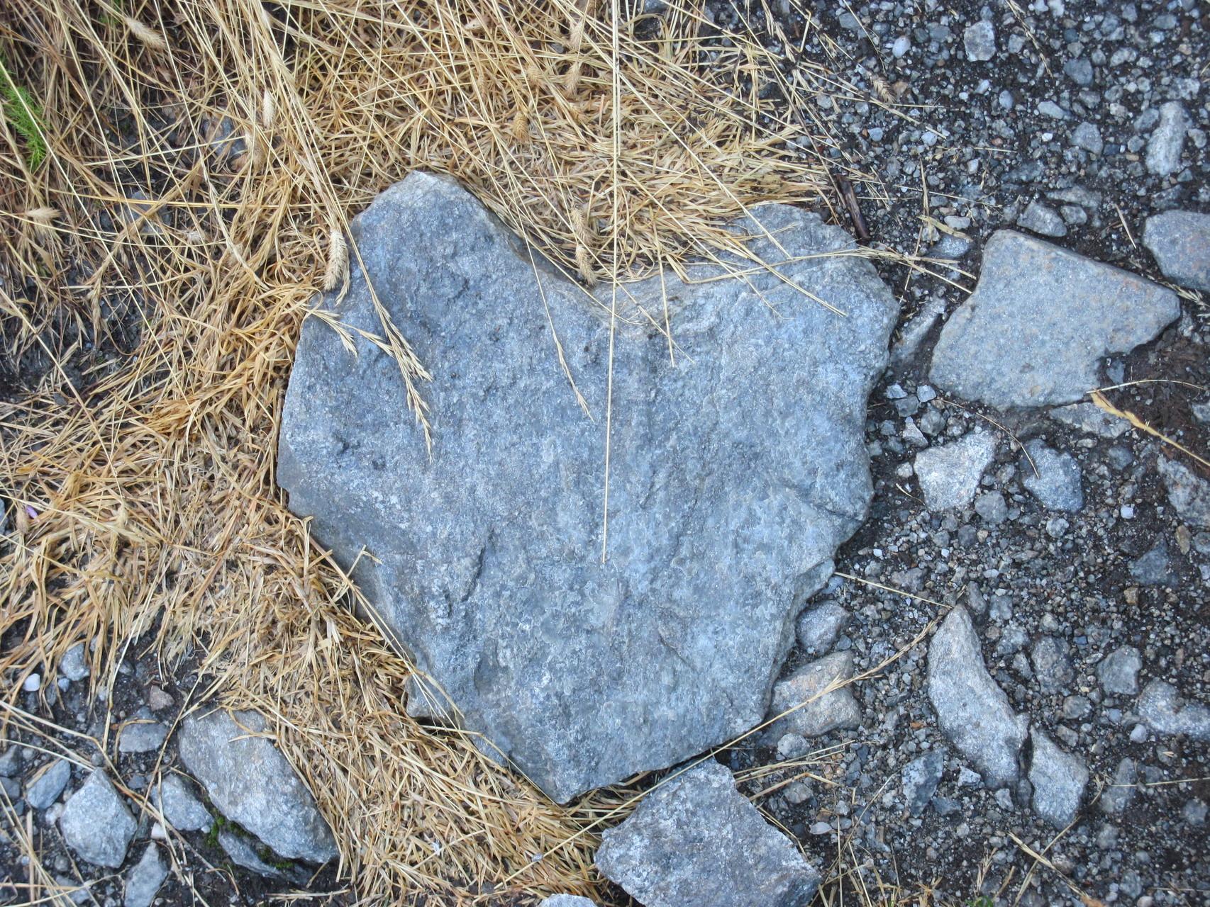 ...wieder einmal ein Herz gefunden...