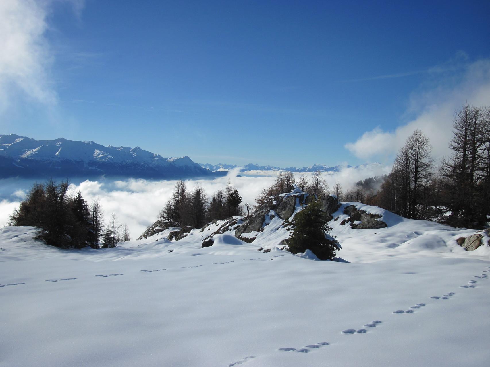 Blick ins Rhonetal mit Nebelmeer