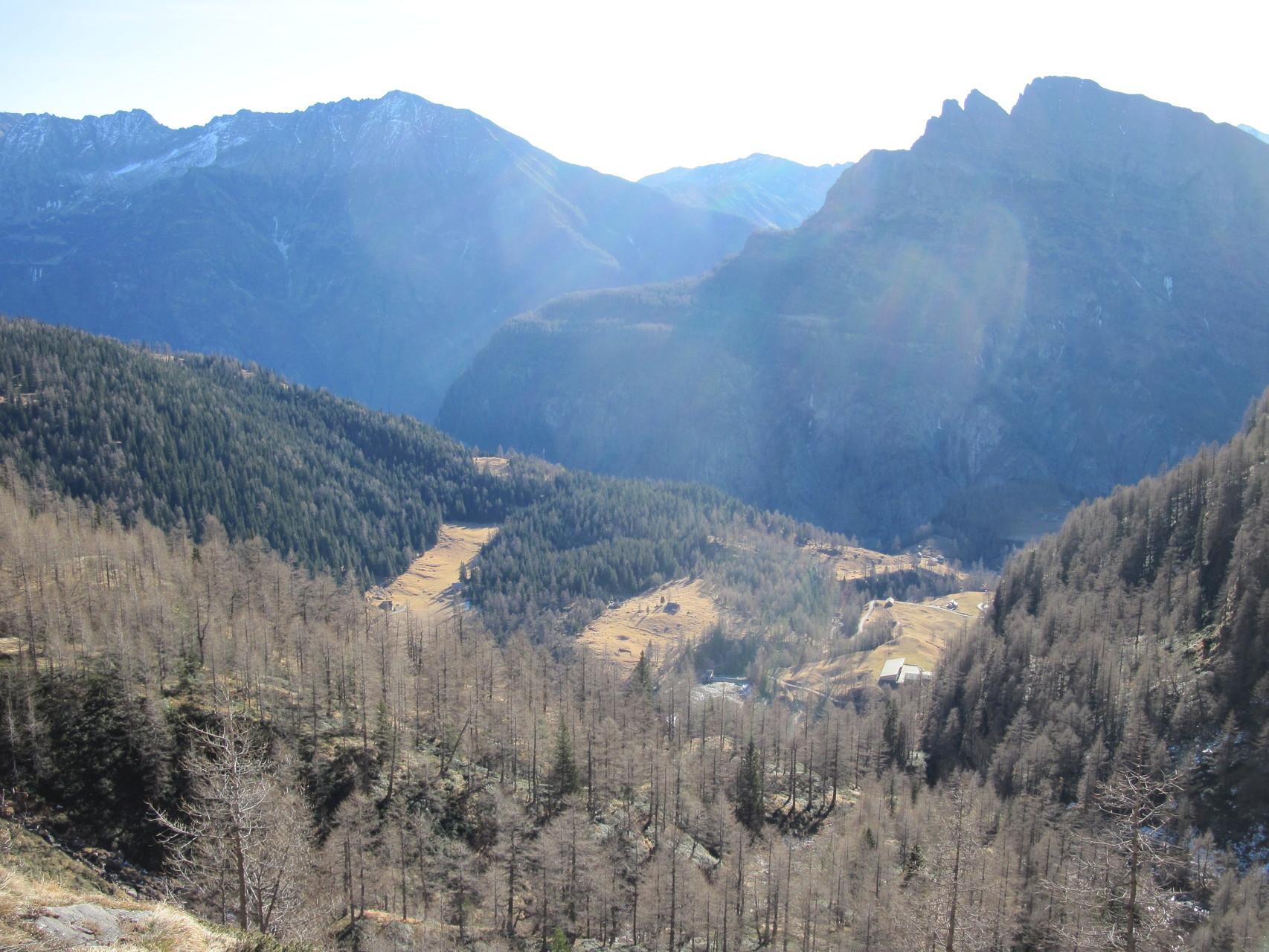 Ausblick auf Alpjen, Hintergrund Camoscellahorn und Seehorn