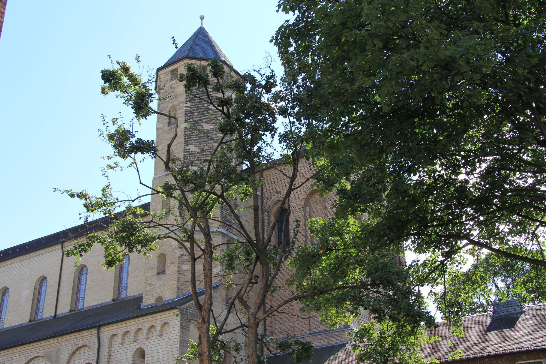 Führung Romanische Kirchen - St. Maria im Kapitol  (nahe Heumarkt)