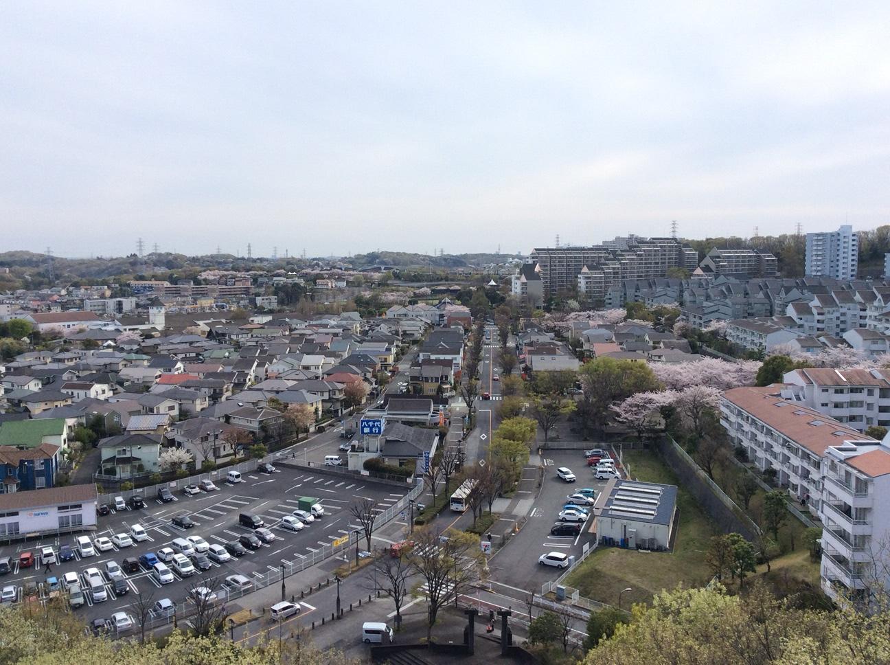 ファインタワーからの眺望