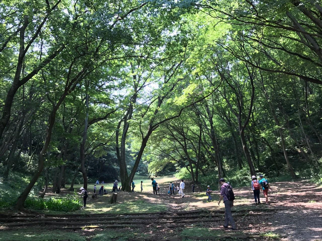 城山公園のオススメ風景(体験学習館南の池付近)です