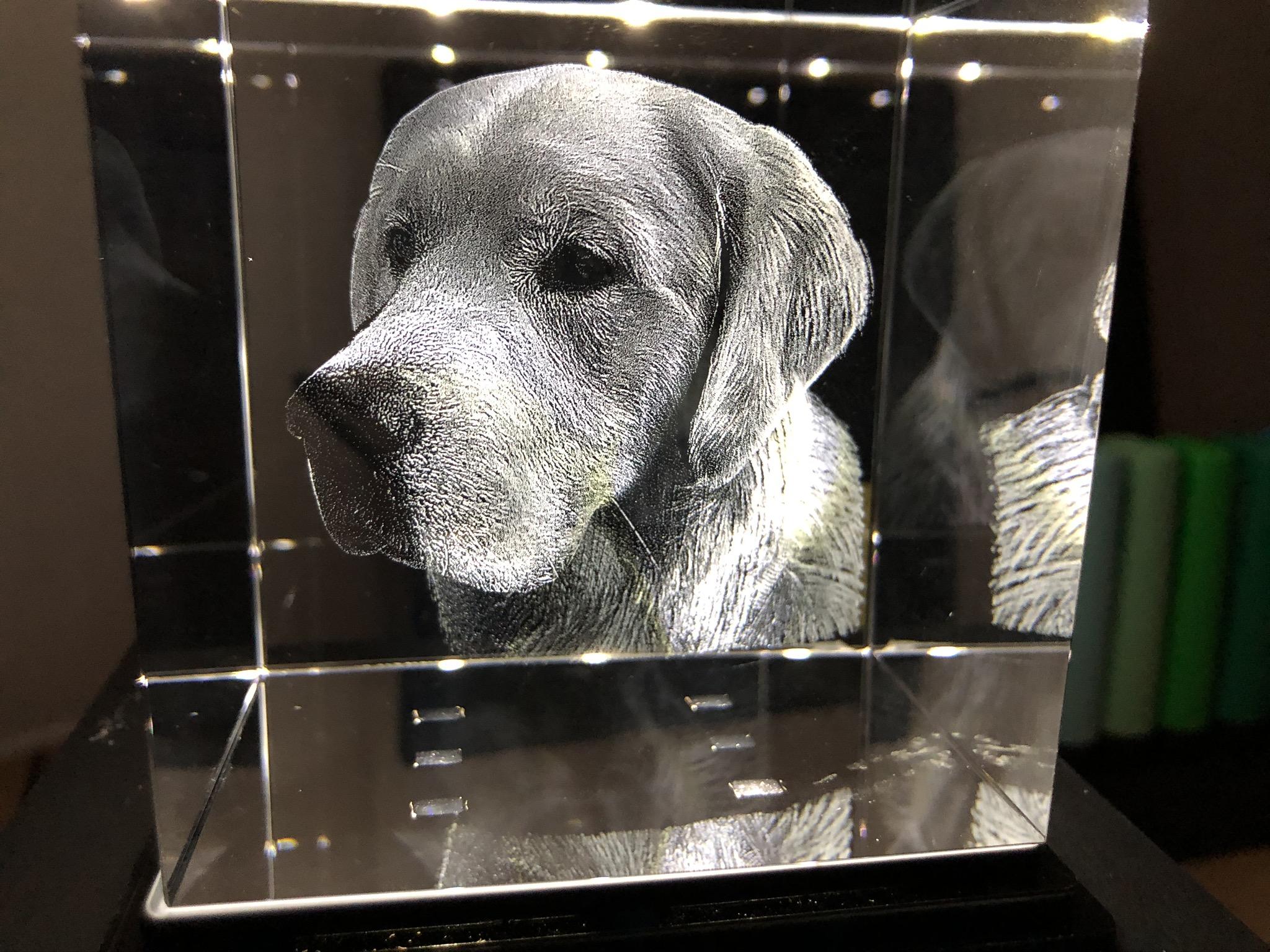 3D-Laser-Bild im Glas - mega cooles Nachtlicht!!