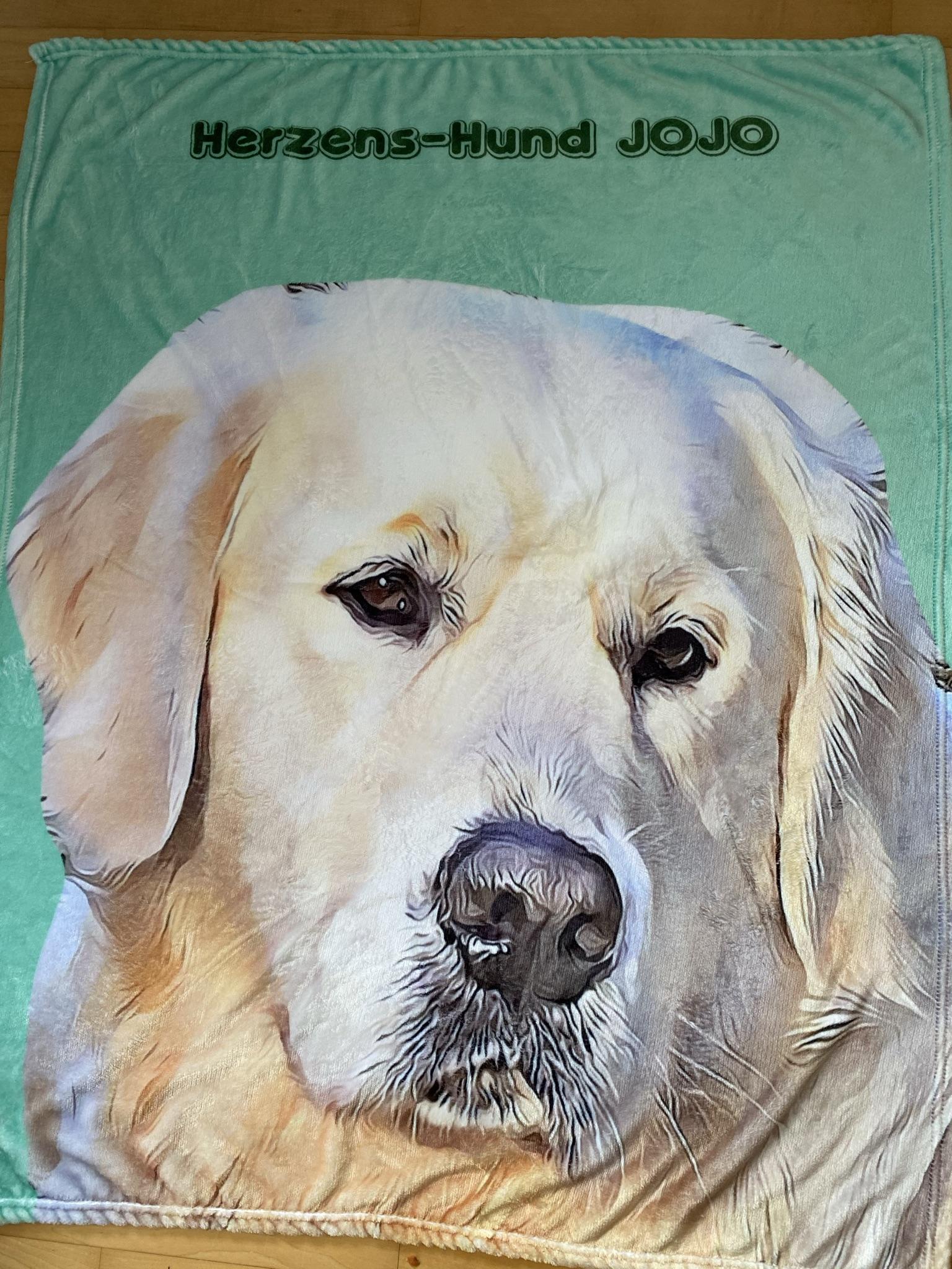 Neue Kuscheldecke für angehenden Herzenshund