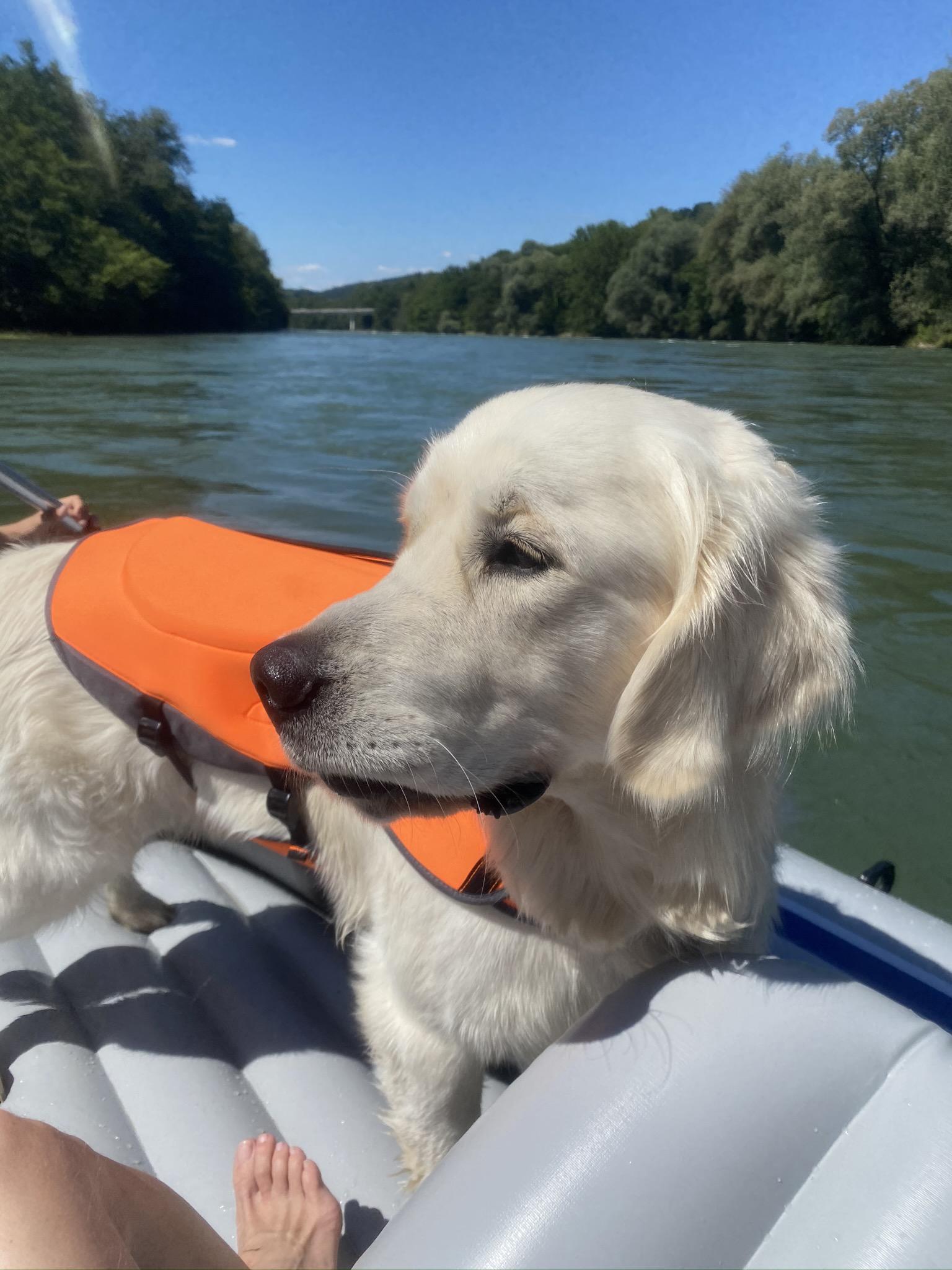 Wir haben ein neues Schlauchboot - supercool! Nun kann ich mich sogar quer reinlegen und habe Platz!!!