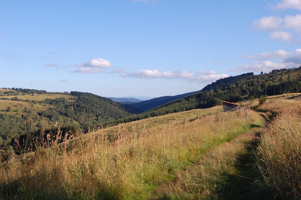 paysage des Hautes Chaumes