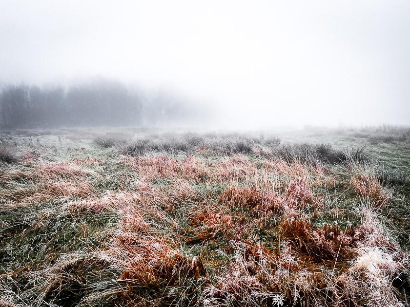 Photo de paysage, Le plaisir photographique, Léonard Eric, Avin balade