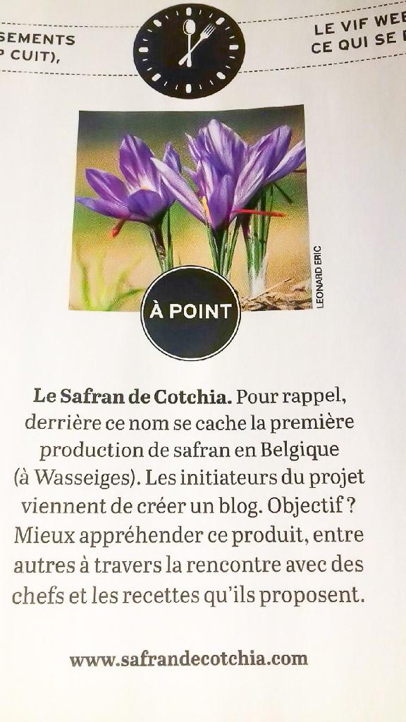 """Article  sur le Safran de Cotchia dans """" Le Vif """""""