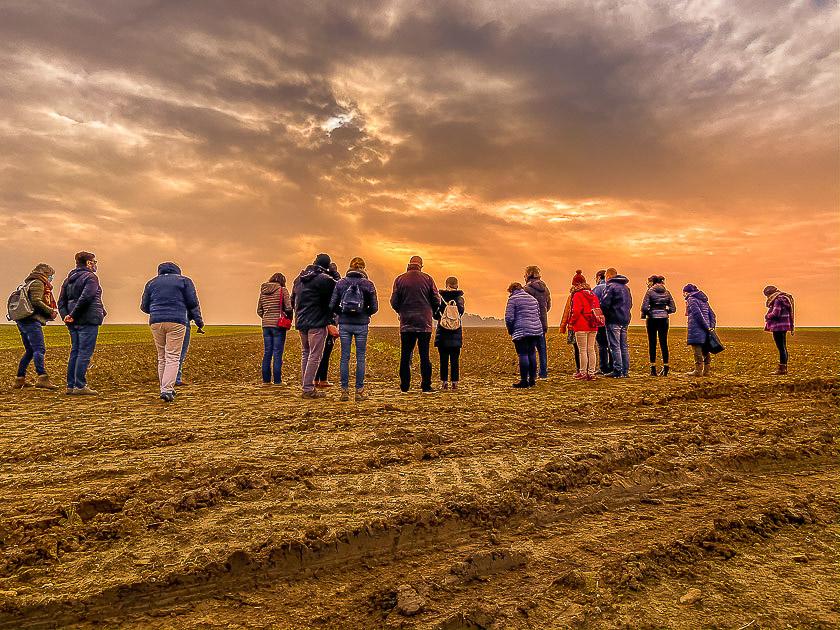 Visite touristique d'un jour de la production de safran au Safran de Cotchia en Belgique, en province de Liège.Photo Léonard Eric