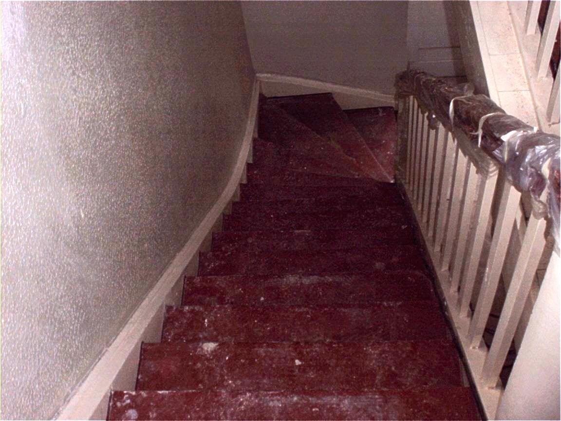 Treppe mit Ochsenblut schleifen