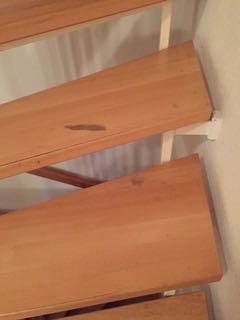 Treppe schleifen Kleinmachnow bei Berlin