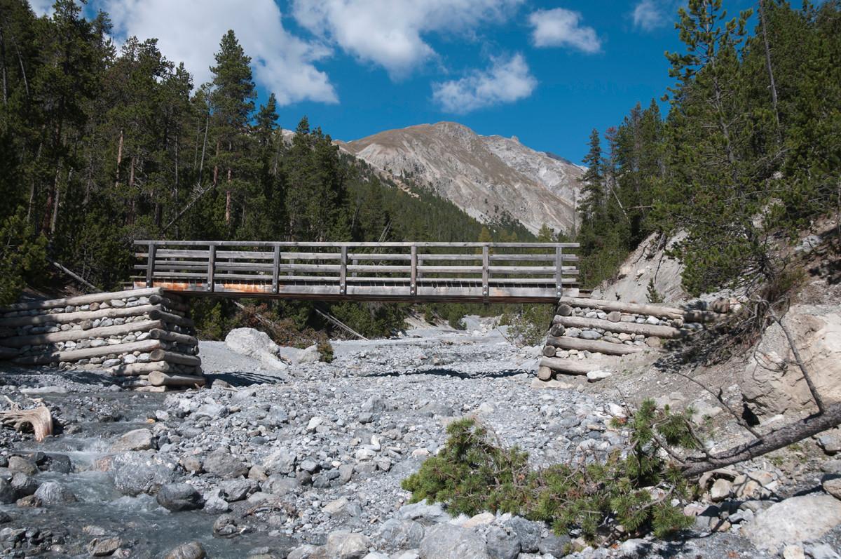 wildbach im nationalpark
