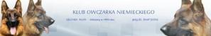 SV Polen