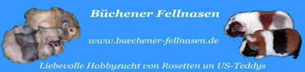 Banner RMZ Bücherner Fellnasen