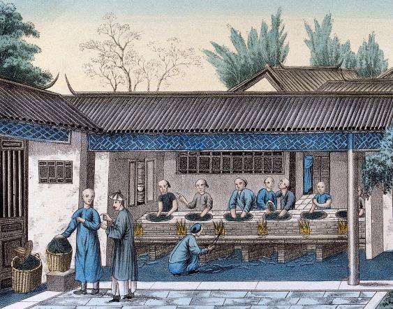 Fixation du thé au wok (détail) - Gravure Wellcome Collection