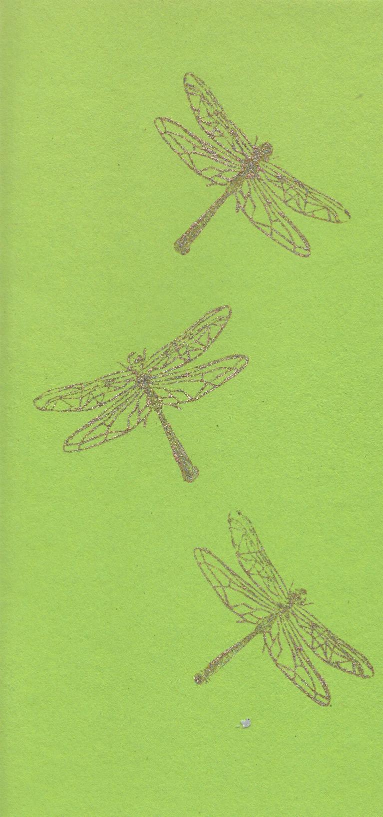 Libellen Karte Din-lang