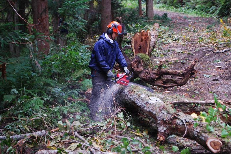 認定事業体に登録ー森林事業部ー