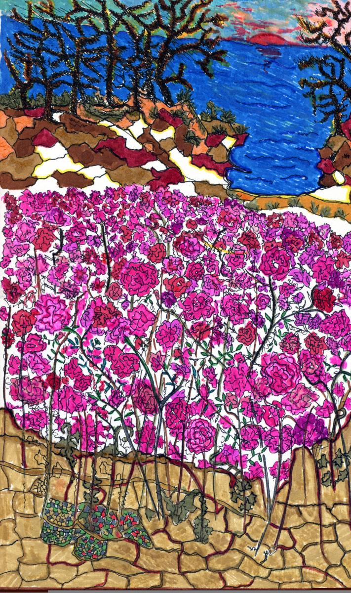 Roses de Méditerranée