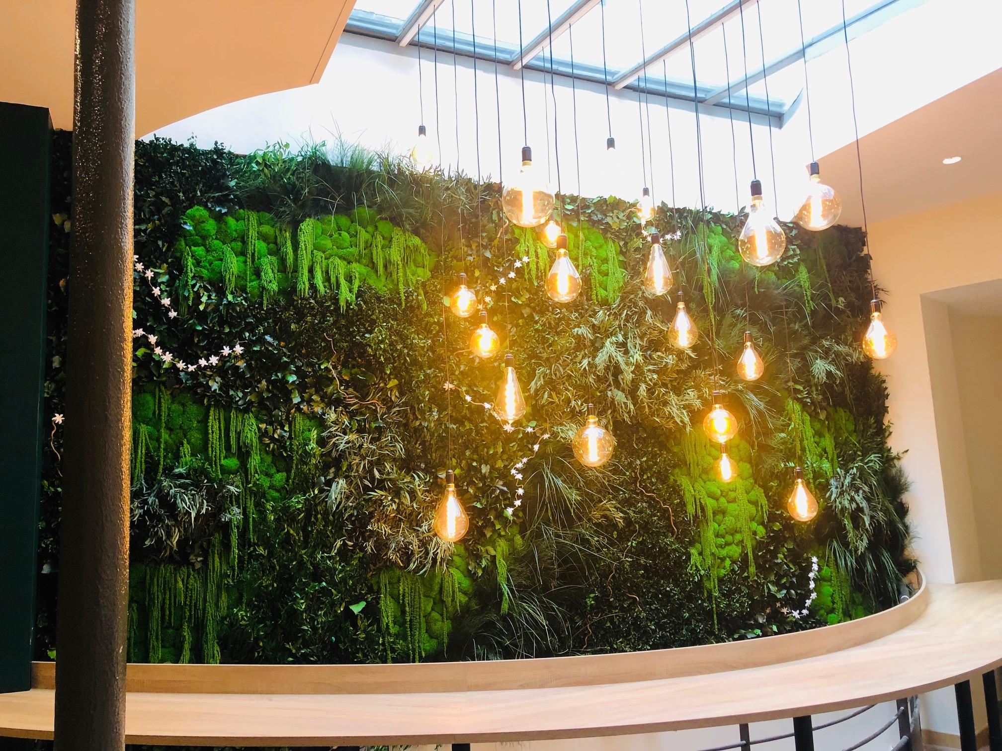 Mur végétal gamme feuillu (AGORIZE)