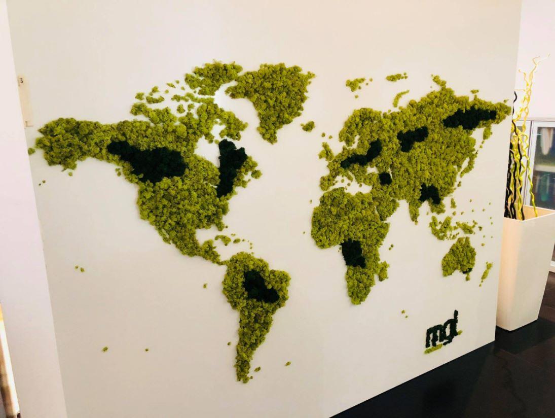 Mur végétal gamme lichen (MGL)