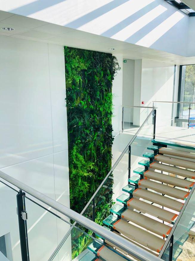 Mur végétal gamme relief (MARTEL TP)