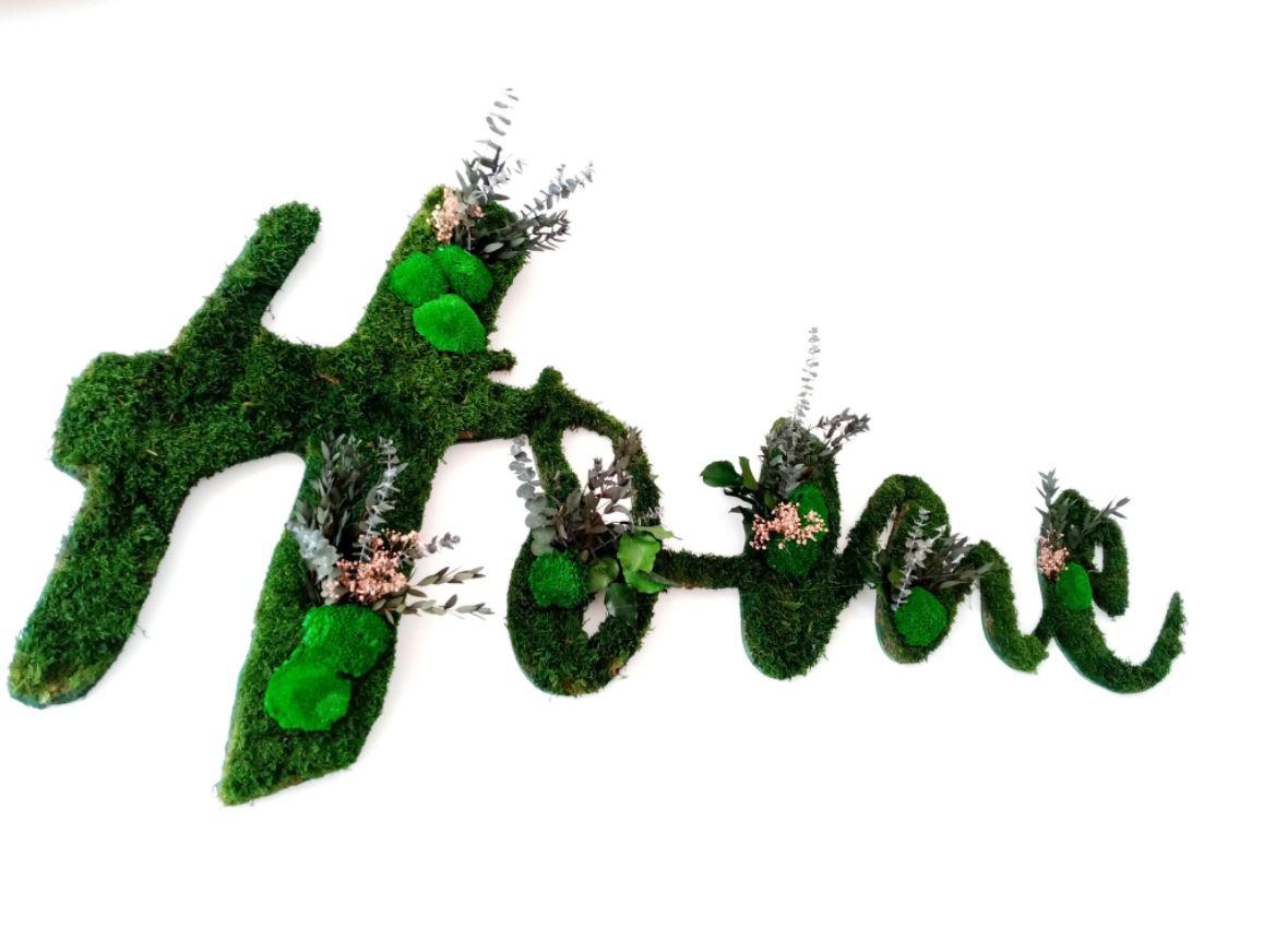Logo végétal (SCAPAD)