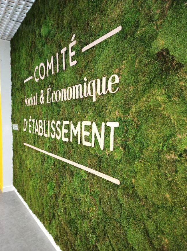 Mur végétal mousse plate (AIRBUS)