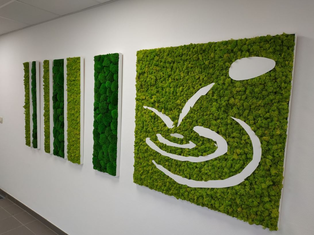 Mur végétal gamme lichen (MAIRIE)