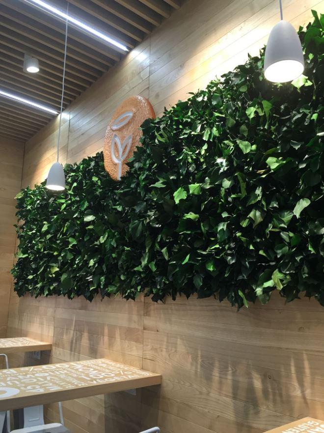 Mur végétal gamme feuillu (RESTAURANT)