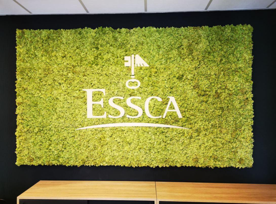 Mur végétal gamme lichen (ESSCA)