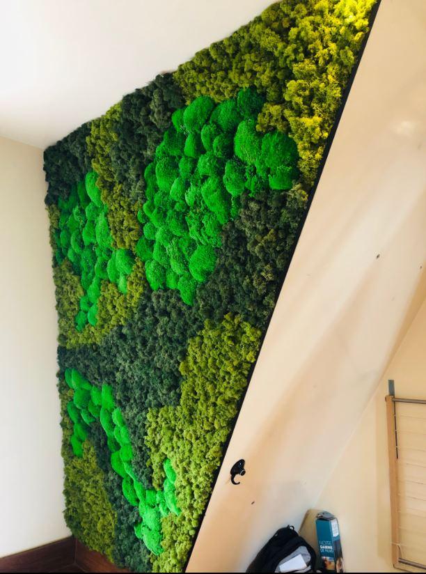 Mur végétal gamme lichen (PARTICULIER)