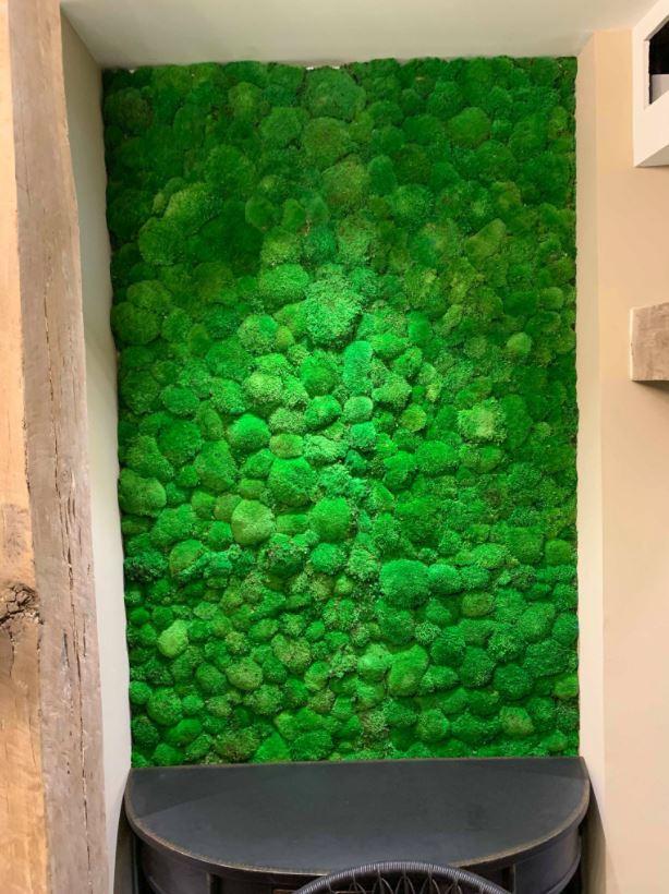 Mur végétal gamme mousse boule (RAPHAEL PERRIER)