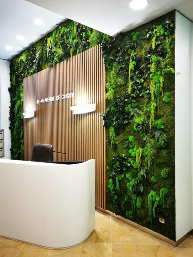 Mur végétal gamme relief (AVENUE DE CLICHY)