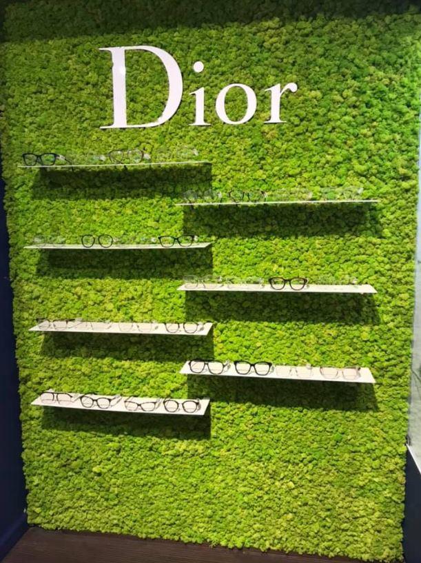 Mur végétal gamme lichen (OPTICIEN)