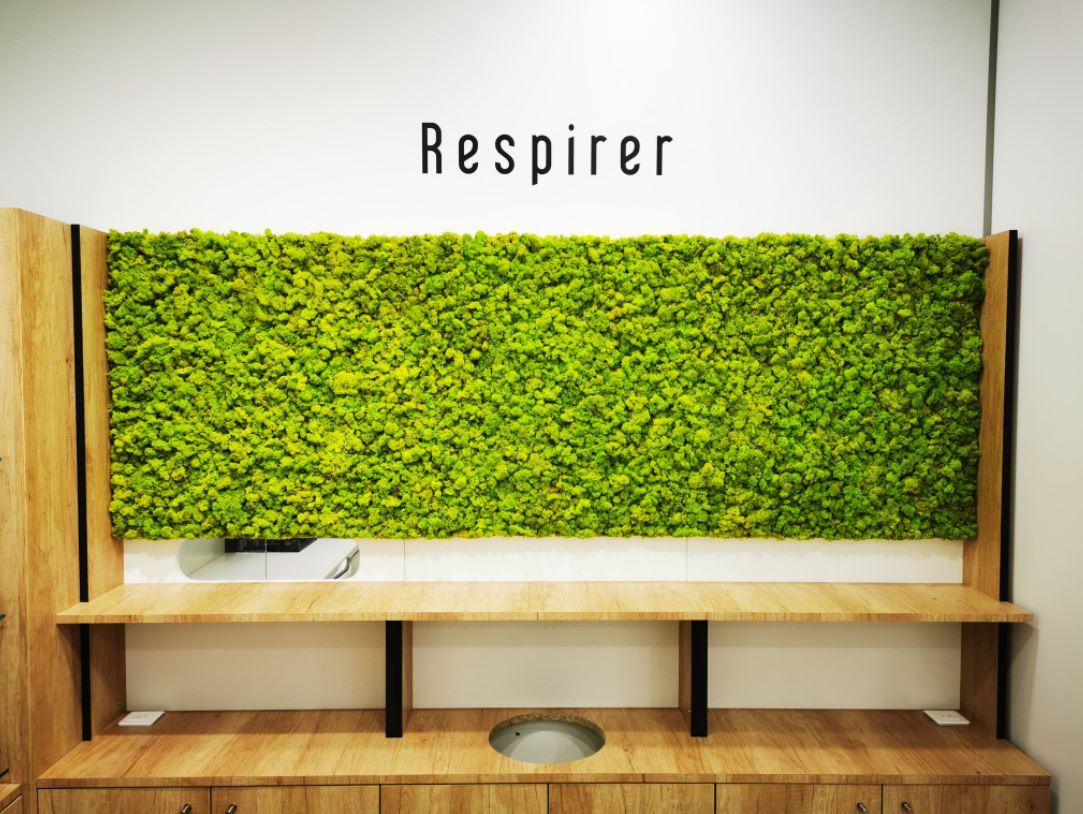 Mur végétal gamme lichen (PHARMACIE DU FRANCE)