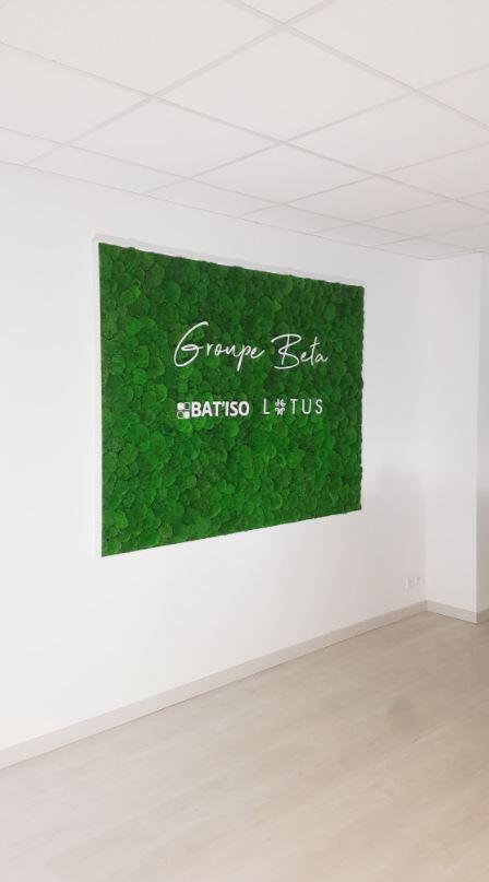 Mur végétal gamme mousse boule (GROUPE BETA)