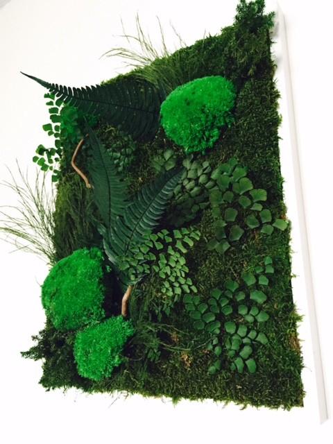 tableaux grand format vegetal indoor mur v g tal stabilis. Black Bedroom Furniture Sets. Home Design Ideas