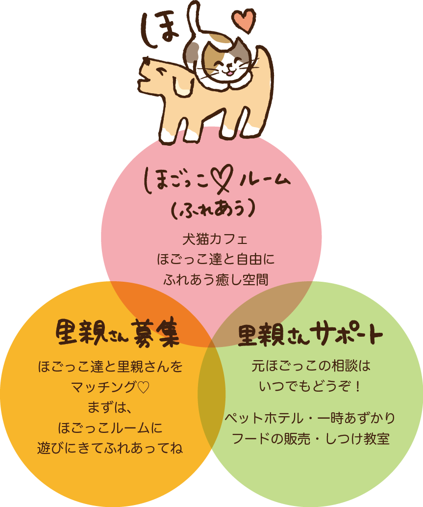 猫カフェ犬カフェ里親サポート