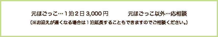 元ほごっこ 1泊2日3000円 元ほごっこ以外は応相談