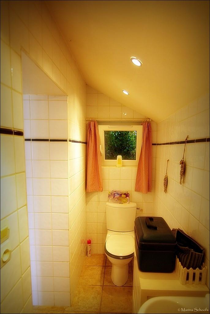 Das Duschbad mit Waschbecken und WC