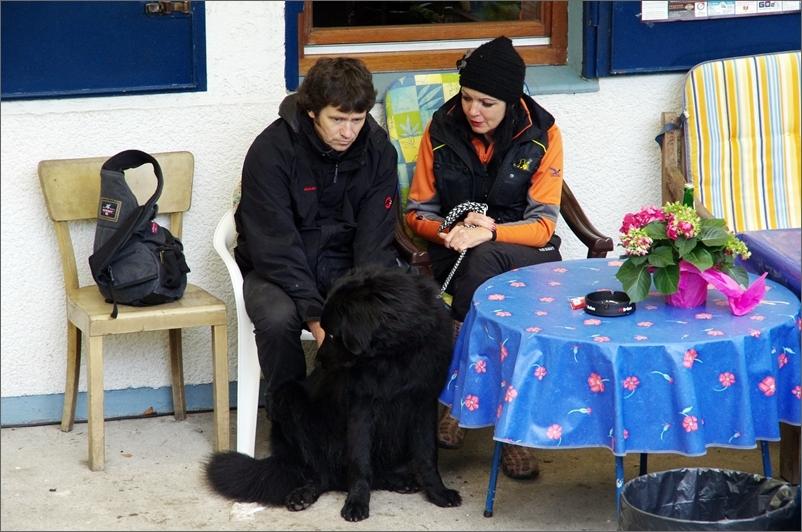 Die Fürsorgegaranten der Junghunde vom Rheinorange
