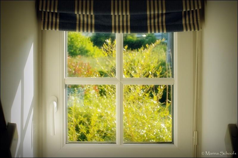 Blick aus dem Dachfenster in den Garten
